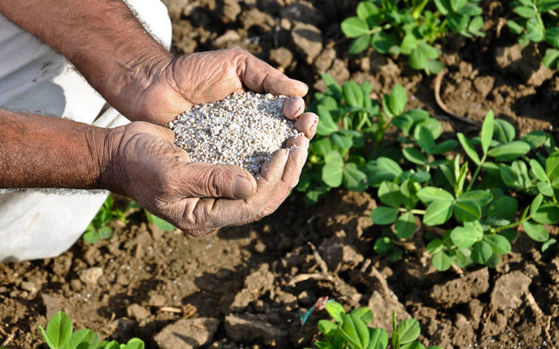Zuari Agro, Paradeep Phosphates, Fertiliser plant, Goa, Adventz Group, OCP Group, Nitrogenous fertilisers, Zuari Maroc Phosphates, Mangalore Chemicals & Fertilisers