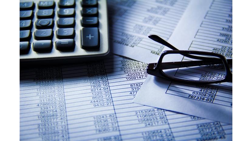 Schaeffler India, Financial results